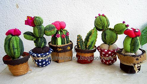 a whole family of potted cacti