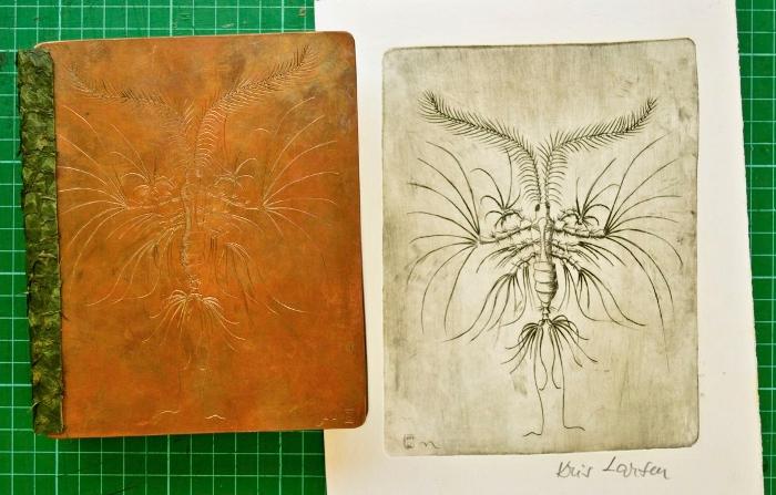 Leontopontes, plate and print